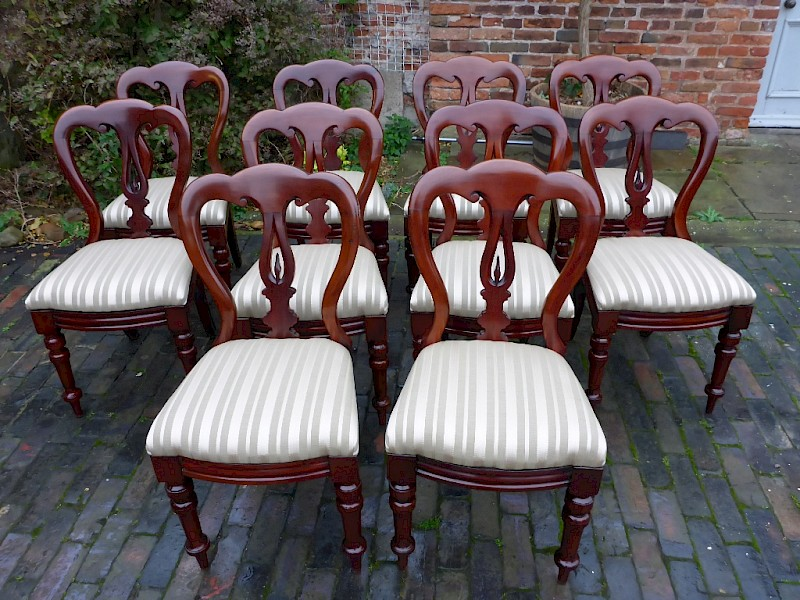 A Good Set of 10 Victorian Spear point Balloon Back Dining Chairs