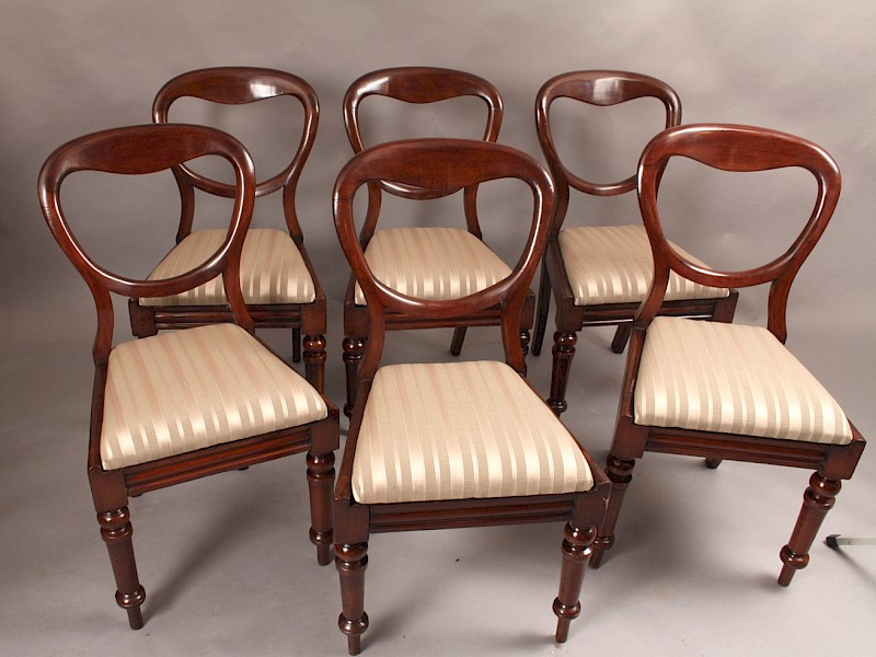 Set of Six Victorian Mahogany Balloon Back dining Chairs